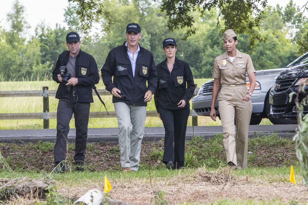 Einige Marinehäftlinge sind auf der Flucht. Pride (Scott Bakula, 2.v.l.), Lasalle (Lucas Black, l.), Brody (Zoe McLellan, 2.v.r.) und Navy Lieutenan... - Bildquelle: 2014 CBS Broadcasting Inc. All Rights Reserved.