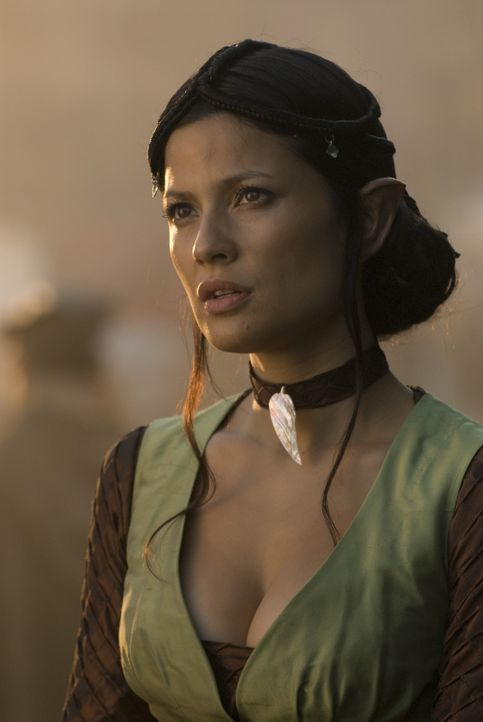 Die tapfere Kriegerin Perfidia (Natassia Malthe) will zusammen mit drei Rittern dem finsteren Tyrann Dragon Eye den Kampf ansagen ... - Bildquelle: 2008 Dragonsteel Films Inc.