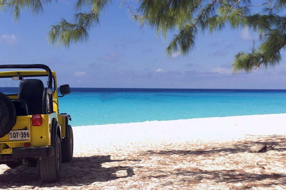 """Das paradiesische """"Barsato Island"""" gilt bei Touristen als Ort der Ruhe und Erholung. Bis zu dem Tag, an dem über diese Idylle das Grauen hereinbric... - Bildquelle: Regent Worldwide Sales LLC"""