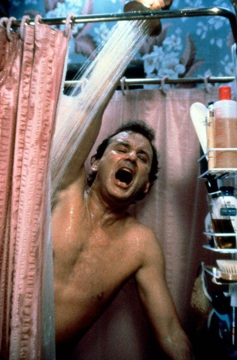 Phil (Bill Murray) hasst es, kalt zu duschen. Doch daran wird sich der zynische Wetterfrosch gewöhnen müssen ... - Bildquelle: Columbia TriStar