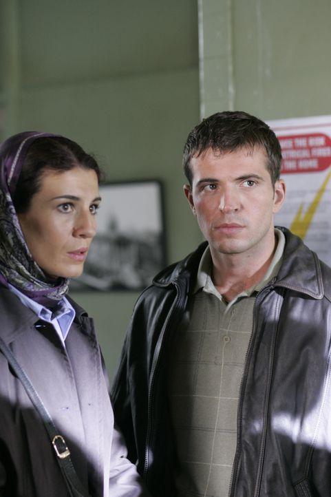 Eines Tages wollen Nick (Tygh Runyan) und Bella (Tina Milo Milivojevic) im Bürgerbüro des Rathauses eine Vermisstenanzeige aufgeben, weil sie eine... - Bildquelle: Hallmark Entertainment