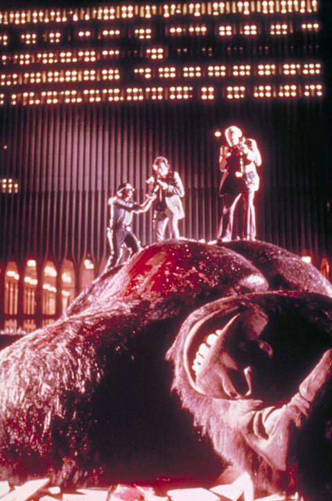 Ist King Kong wirklich am Ende angekommen? - Bildquelle: Paramount Pictures