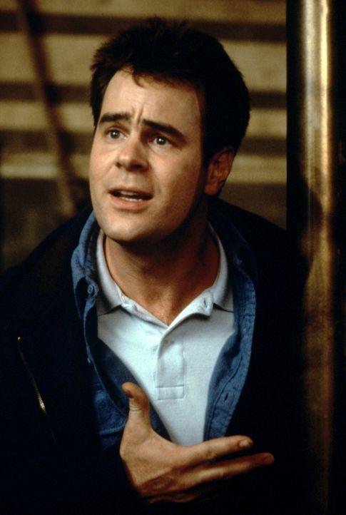 Dr. Stantz (Dan Aykroyd) hat einen Forschungsauftrag für Parapsychologie an der Universität. Er gilt zwar als Spinner, doch in dem gut bezahlten J... - Bildquelle: Columbia Pictures