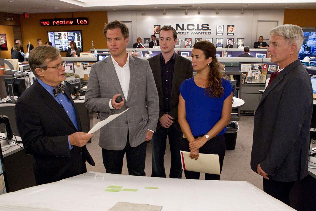 Ein neuer Fall wartet auf das Team: Ducky (David McCallum, l.), Tony (Michael Weatherly, 2.v.l.), McGee (Sean Murray, M.), Ziva (Cote de Pablo, 2.v.... - Bildquelle: CBS Television