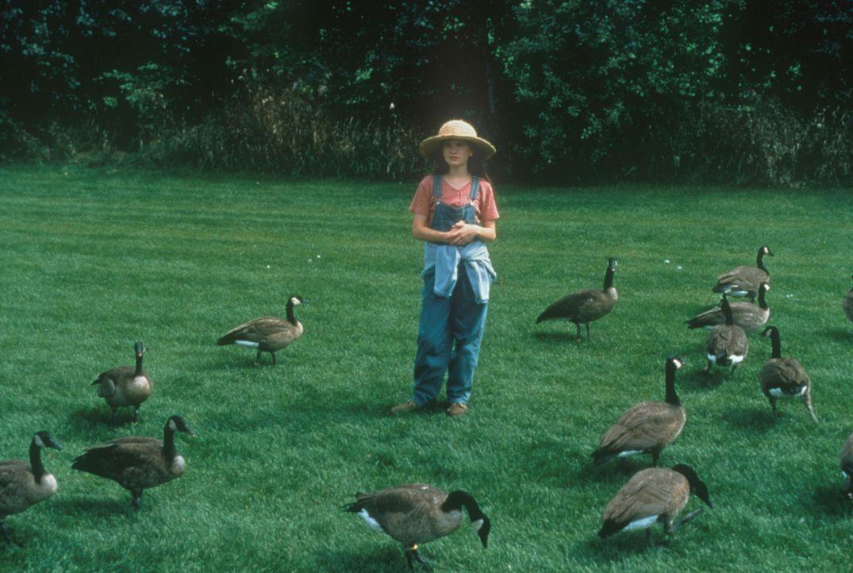 Durch ihre Liebe zu den kleinen Wildgänsen vergisst Amy (Anna Paquin) ihre Ängste und ihre Einsamkeit und findet durch ihren liebevollen Vater ein n... - Bildquelle: Columbia Pictures