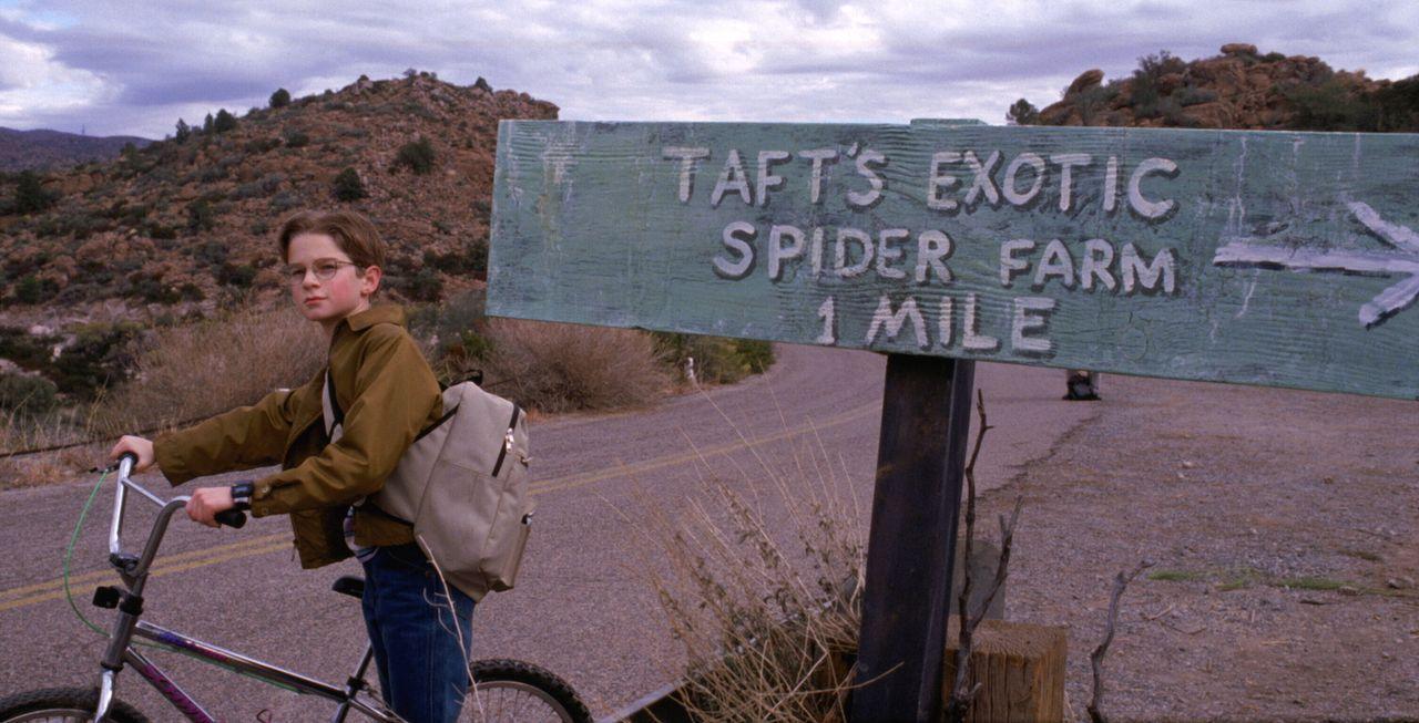 Noch ahnt Mike Parker (Scott Terra) nicht, dass sich auf der Spinnenfarm grausame Dinge abspielen ... - Bildquelle: Warner Bros. Pictures
