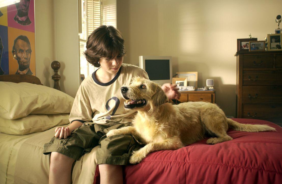Obwohl seine Mutter allergisch auf Hunde reagiert, schmuggelt Zach (Sammy Kahn) Lenny in sein Zimmer. Plötzlich fängt der Hund an, laut und deutli... - Bildquelle: North by Northwest Entertainment