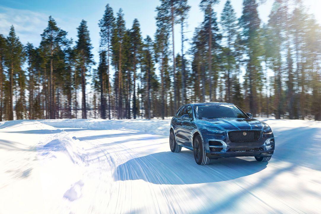 Jag_FPACE_Cold_Test_Image_290715_05_small - Bildquelle: Jaguar