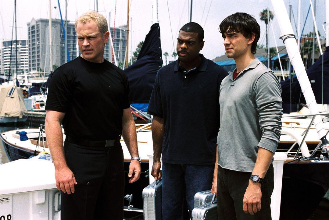 Auf die wunderschönen Karibikinsel Bimini werden Stephen Connor (Neal McDonough, l.), Frank Powell (Troy Winbush, M.) und Miles McCabe (Christopher... - Bildquelle: CBS Television