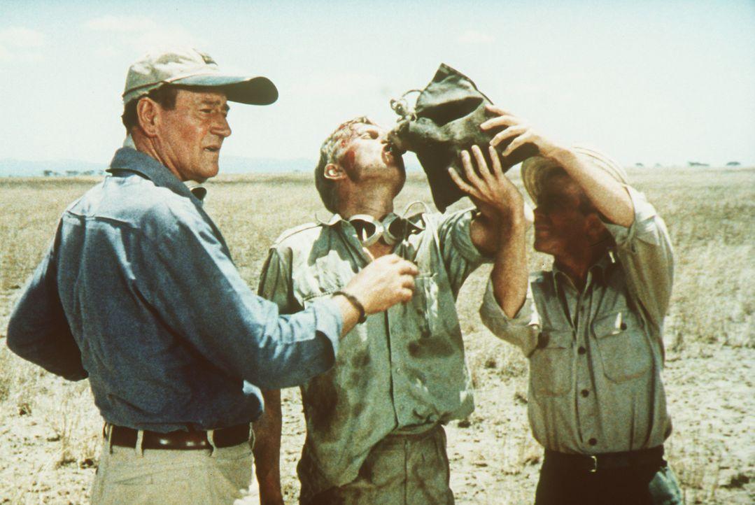 Jagen macht durstig: Sean Mercer (John Wayne, l.), Kurt Stahl (Hardy Krüger, M.) und Pockets (Red Buttons, r.) gönnen sich eine Pause von ihrem an... - Bildquelle: Paramount Pictures