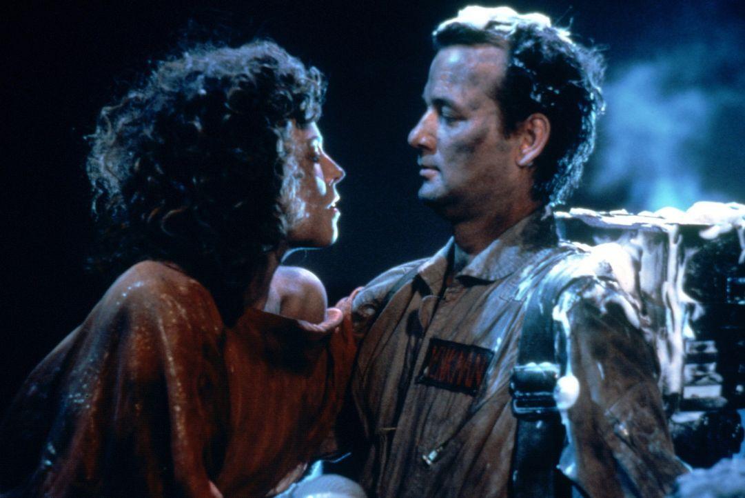 """Der Geisterjäger Peter (Bill Murray, r.) ist von der süßen Dana (Sigourney Weaver, l.) hingerissen, nur den Dämon """"Torwächter Zuul"""", der von ih... - Bildquelle: Columbia Pictures"""