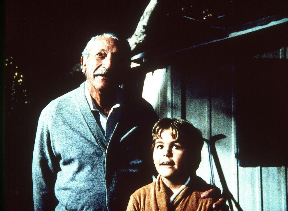 Fasziniert sehen sich Großvater Harvey (Harold J. Stone, l.) und sein Enkel Adam (Jerry Supiran, r.) die Sterne an ... - Bildquelle: Worldvision Enterprises, Inc.