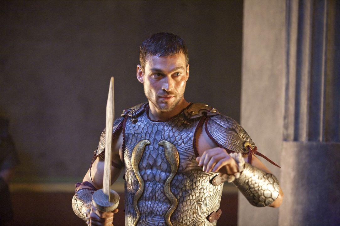 Wird zur Legende: Spartacus (Andy Whitfield) ... - Bildquelle: 2010 Starz Entertainment, LLC