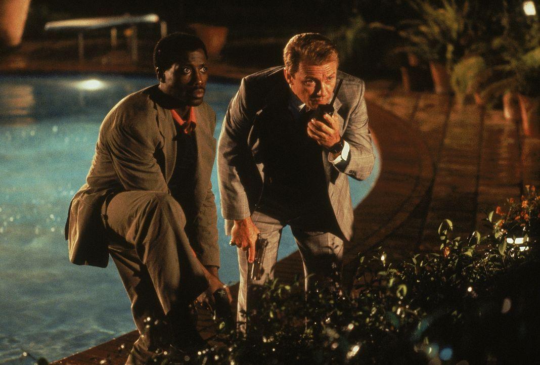 Auf gefährlichem Terrain: die beiden Cops Web Smith (Wesley Snipes, l.) und Tom Graham (Harvey Keitel, r.) ... - Bildquelle: 1993 Twentieth Century Fox Film Corporation. All rights reserved.