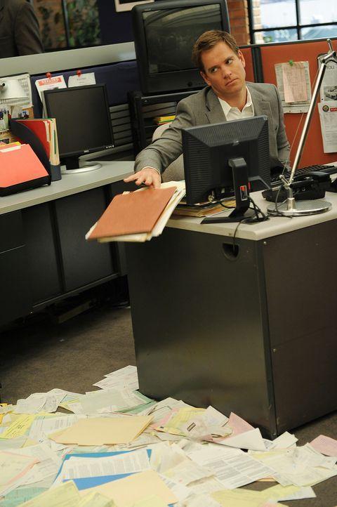 Ermittelt in einem ganz besonderen Fall: Tony (Michael Weatherly) ... - Bildquelle: CBS Television
