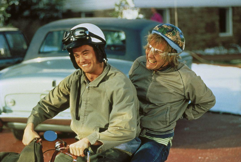 Harry (Jeff Daniels, r.) und Llyod (Jim Carrey, l.) sind auf der Suche nach ihrer Angebeteten ... - Bildquelle: New Line Cinema