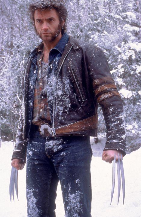 In einer Welt voller Hass und Vorurteile gehört er mit seinen sechs Klauen zu den ausgestoßenen Einzelgängern: Wolverine (Hugh Jackman) verfügt über... - Bildquelle: 2000 Twentieth Century Fox Film Corporation. All rights reserved.
