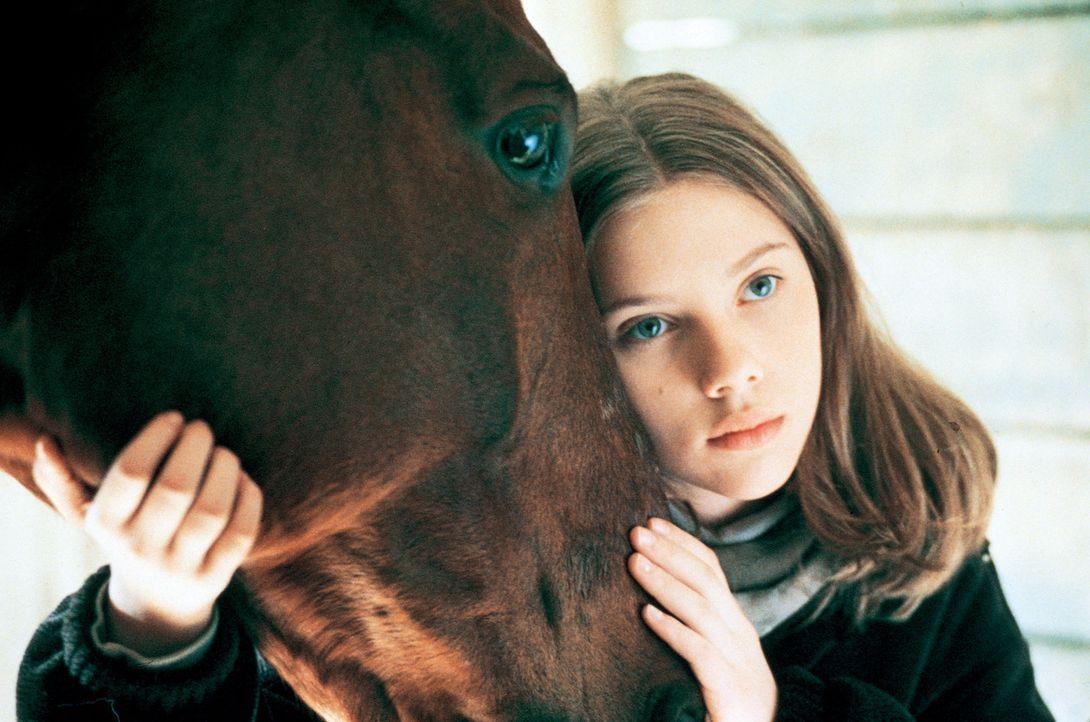 Nur zögerlich lassen Grace (Scarlett Johansson) und ihr Pferd Pilgrim sich auf das Experiment mit dem Pferdeflüsterer ein ... - Bildquelle: Elliott Marks Touchstone Pictures