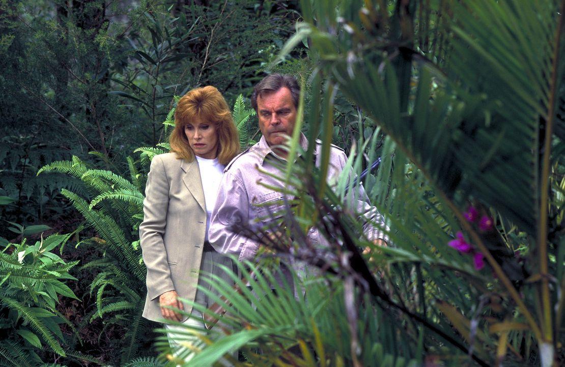 Bei ihrem Kontrollgang durch das Reservat machen Jennifer (Stefanie Powers, l.) und Jonathan (Robert Wagner, r.) eine überaus seltsame Entdeckung ... - Bildquelle: Columbia Pictures