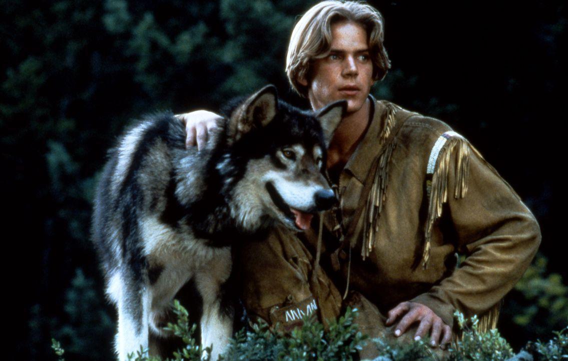 """Alaska 1906. Der junge Henry Casey (Scott Bairstow) lebt in der Wildnis. Sein bester Freund ist ein Wolf, der auf den Namen """"Wolfsblut"""" hört ... - Bildquelle: Doug Curran Walt Disney Company. All rights reserved."""