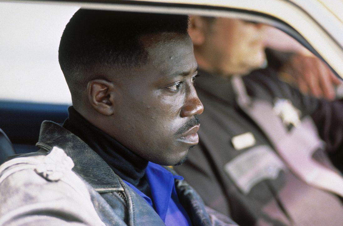 Als Sicherheitsbeamter einer Fluglinie unterrichtet Anti-Terror-Experte John Cutter (Wesley Snipes) Stewardessen und Piloten, wie sie sich bei terro... - Bildquelle: Warner Bros.
