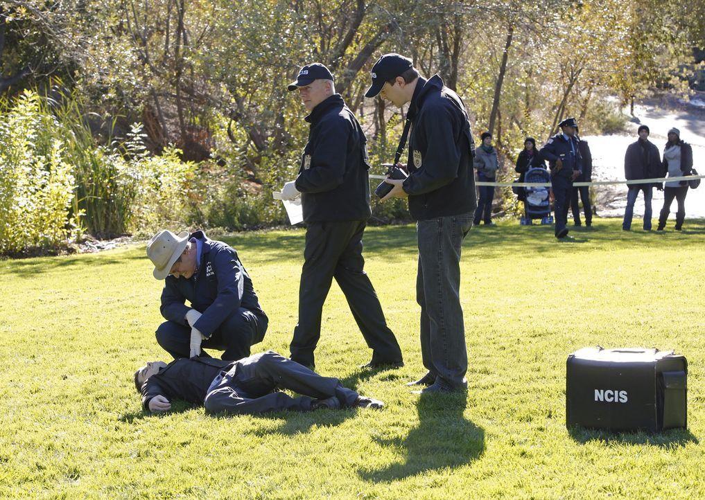Während Special Agent Timothy McGee (Sean Murray, r.) zögert, Gibbs (Mark Harmon, M.) um einen freien Tag zu bitten, versucht Dr. Donald Mallard (Da... - Bildquelle: CBS Television