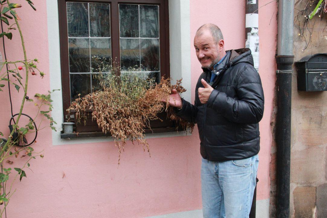 """Wird es Frank Rosin gelingen, das Wirtshaus """"Grüner Baum"""" vor dem endgültigen Ruin zu bewahren? - Bildquelle: kabel eins"""
