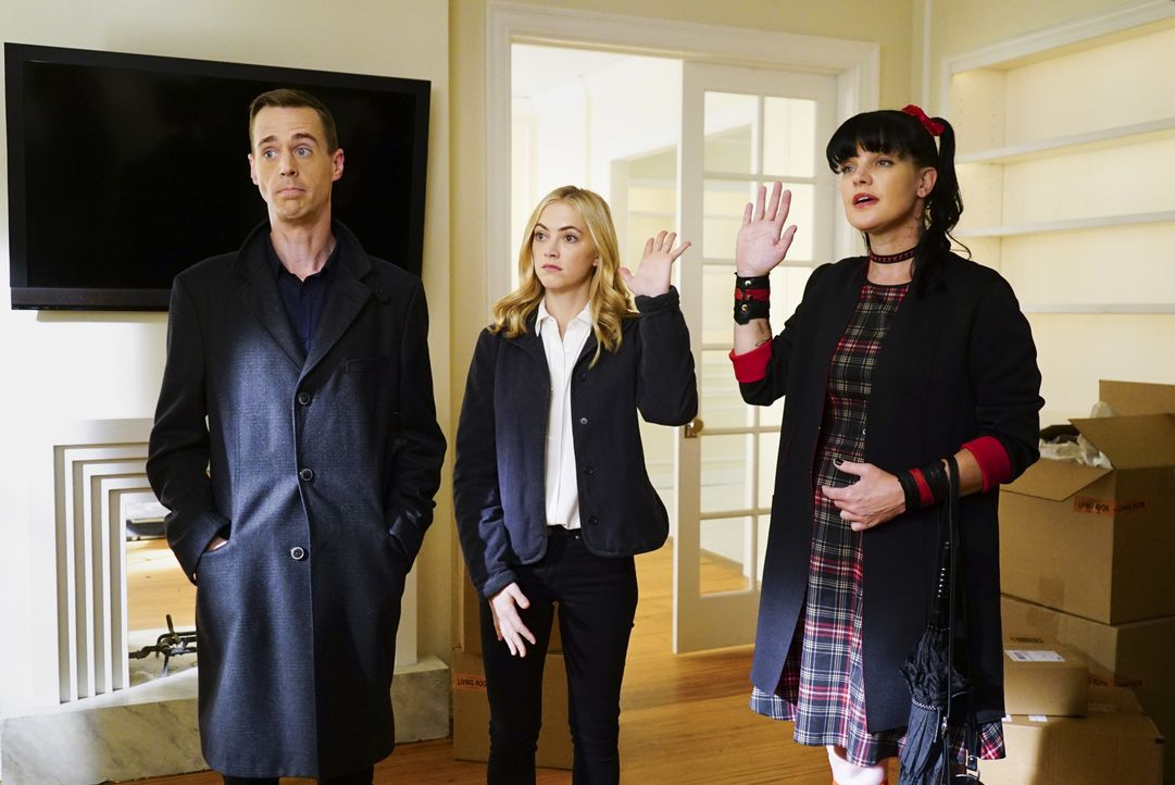 Abby (Pauley Perrette, r.), Bishop (Emily Wickersham, M.) und McGee (Sean Murray, l.) umschmeicheln Tony DiNozzo Sr. denn alle wollen sein Apartment... - Bildquelle: Sonja Flemming 2016 CBS Broadcasting, Inc. All Rights Reserved / Sonja Flemming