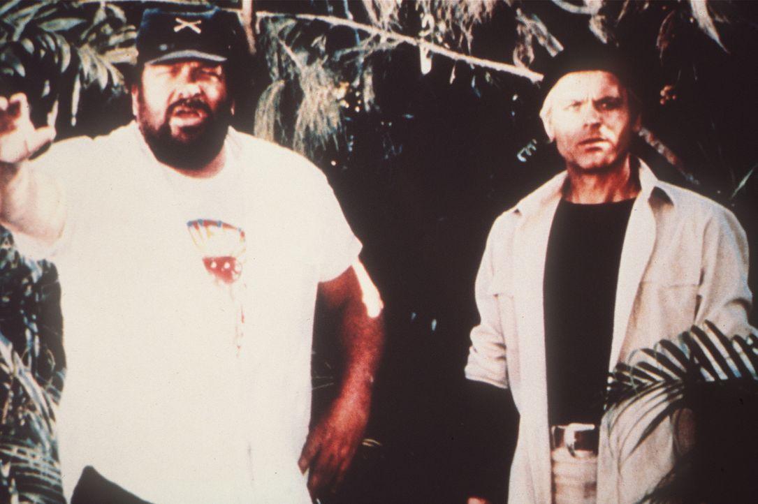 Nachdem Alan (Terence Hill, r.) und Charlie (Bud Spencer, l.) über Bord gegangen sind, erreichen die beiden eine einsame, idyllische Insel. Doch de...