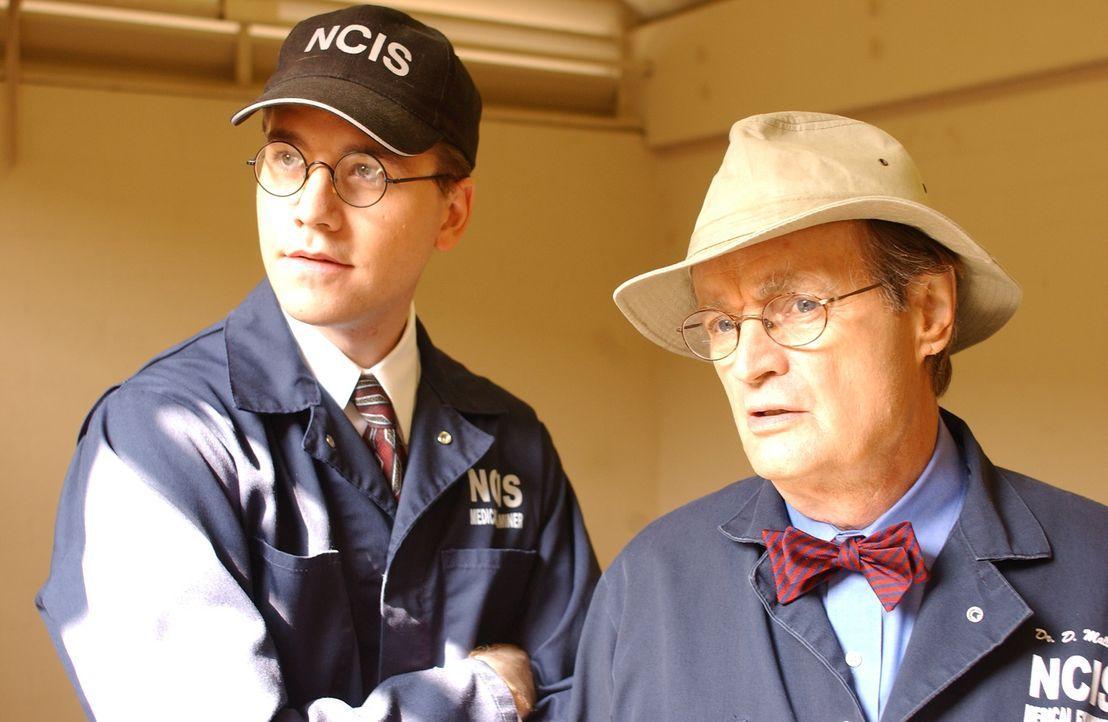 Nachdem die Leiche einer jungen Navy-Angehörigen gefunden wurde, sind Jimmy Palmer (Brian Dietzen, l.) und Ducky Mallard (David McCallum, r.) gefrag... - Bildquelle: CBS Television