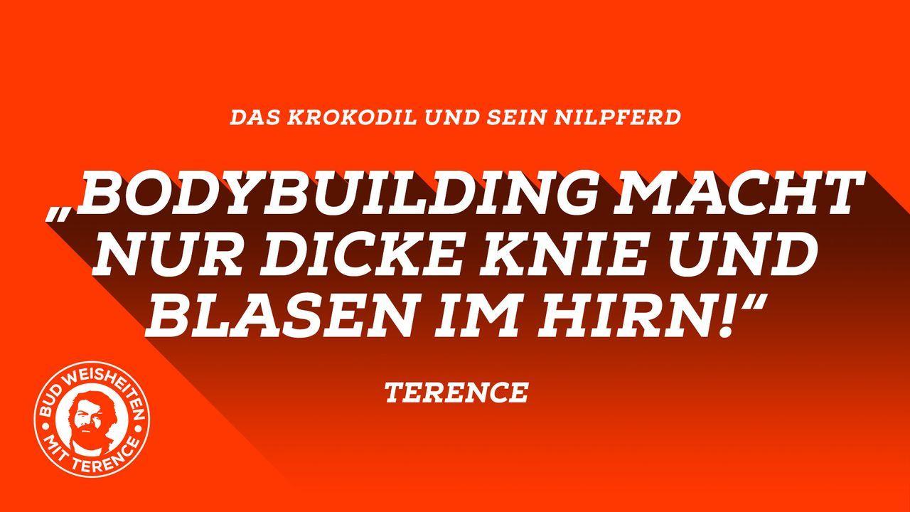 Bud-Weisheiten mit Terence 3