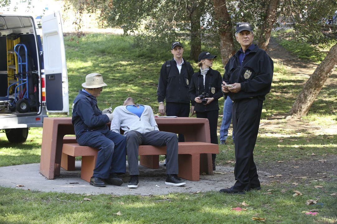 Als ein Unteroffizier ermordet wird, müssen Gibbs (Mark Harmon, r.), Ducky (David McCallum, l.), Bishop (Emily Wickersham, 2.v.r.) und McGee (Sean M... - Bildquelle: Monty Brinton CBS Television / Monty Brinton