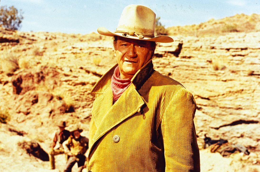 Als der Goldrausch den Wilden Westen befällt, sitzt Rancher Wil Anderson (John Wayne) auf einmal mit seinem Vieh allein da ... - Bildquelle: Warner Bros.