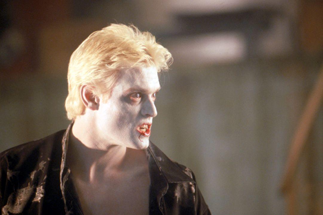 Nachdem er ein ausgiebiges Bad in einer Wanne voller Blut genommen hat, scheint Dracula (Stephen Billington) endlich wieder zu seinen ursprüngliche... - Bildquelle: Neo Art & Logic