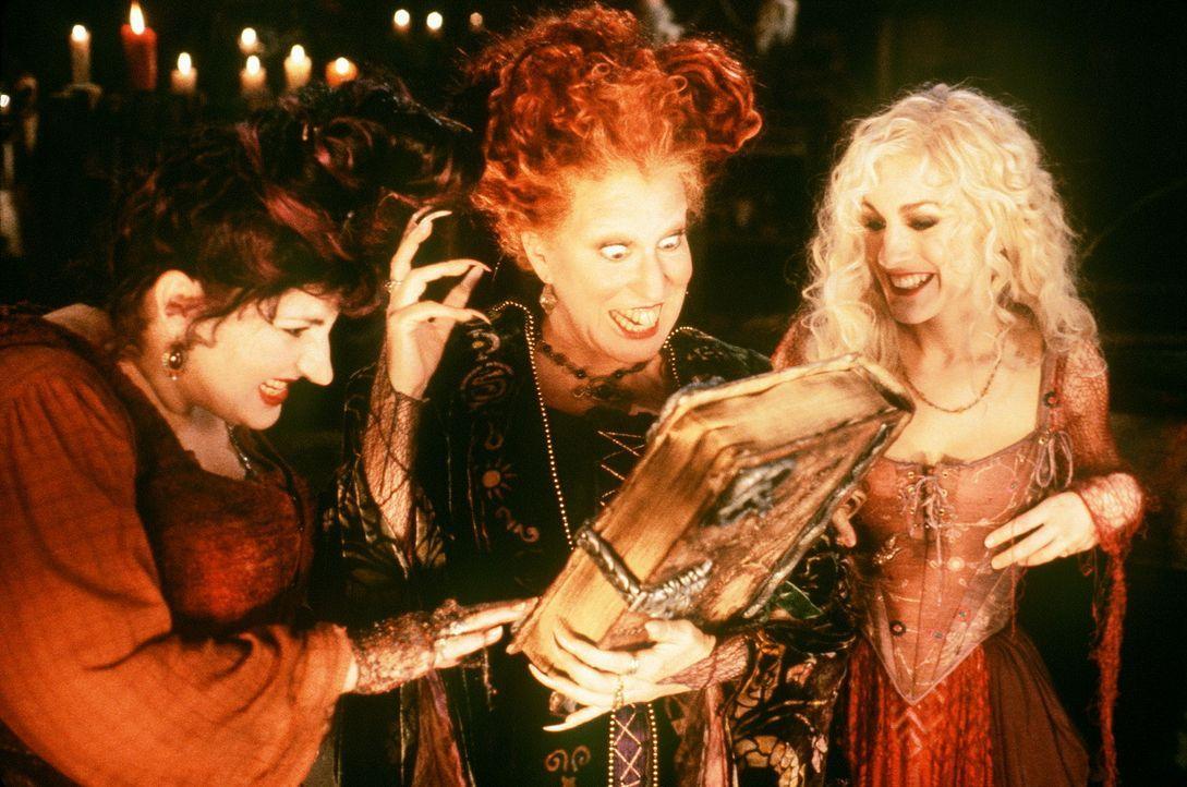 Dreihundert Jahre nach ihrem Dahinscheiden werden die drei Hexen (v.l.n.r.) Mary (Kathy Najimy), Winifred (Bette Midler) und Sarah (Sarah Jessica Pa... - Bildquelle: The Walt Disney Company