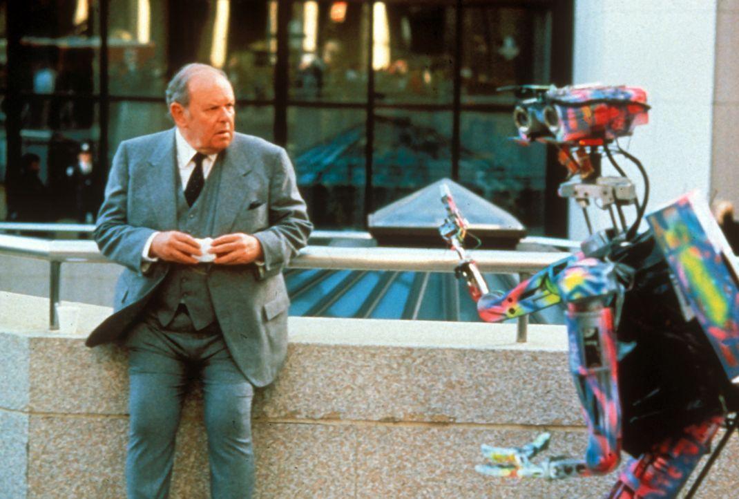 Die kommunikative Ader des Roboters Nr. 5 ist immer wieder für Überraschungen gut ... - Bildquelle: Columbia TriStar Pictures