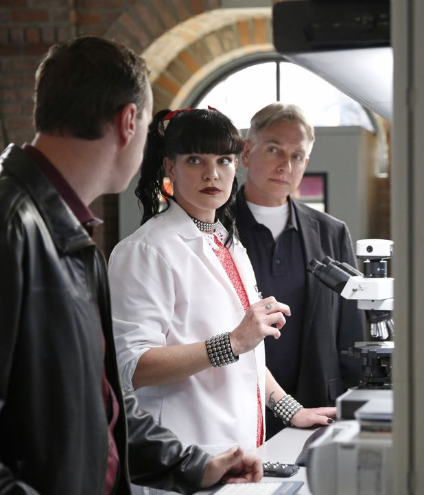 Ein neuer Fall wartet auf Gibbs (Mark Harmon, r.), McGee (Sean Murray, l.) und Abby (Pauley Perrette, M.) ... - Bildquelle: CBS Television