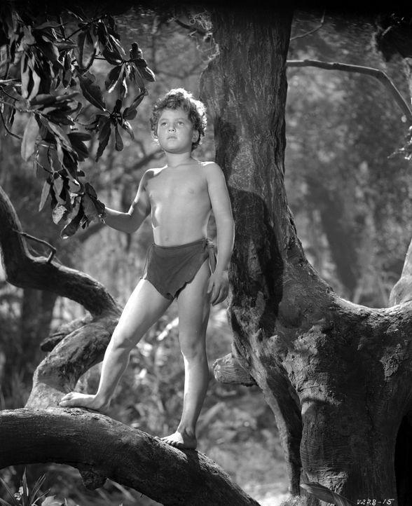 Boy (John Sheffield) - Bildquelle: 1942 Warner Bros. Entertainment Inc. All Rights Reserved.