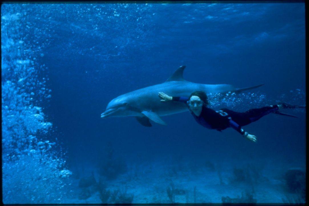 Die Meeresbiologin Mary Beth Dunhill (Kathleen Quinlan) will den gefangenen Delfin Roxanne langsam wieder in die Freiheit entlassen ...