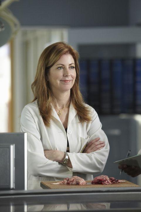 Megan (Dana Delany) fest, dass sie viel zu oft und viel zu lange in ihre Arbeit vertieft ist und sie dadurch kaum etwas von ihren Kollegen weiß - wa... - Bildquelle: ABC Studios
