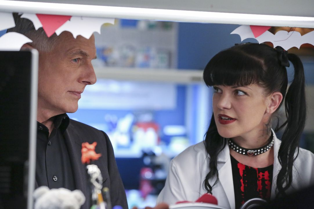 Ein äußerst schwieriger Fall muss gelöst werden: Gibbs (Mark Harmon, l.) und Abby (Pauley Perrette, r.) ermitteln ... - Bildquelle: Michael Yarish 2016 CBS Broadcasting, Inc. All Rights Reserved / Michael Yarish