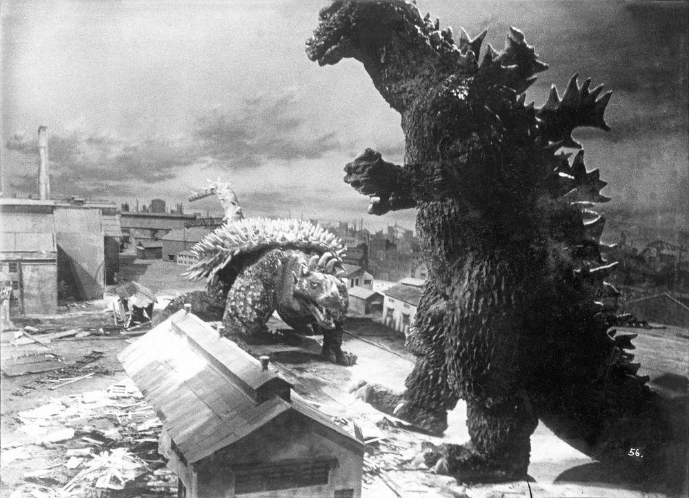 Auf einer einsamen Insel stoßen Piloten auf zwei gigantische Monster, die sich bekämpfen: Godzilla (r.) und dessen Feind Angilus (l.). Die Kolosse g... - Bildquelle: 1955 Toho Co. Ltd.