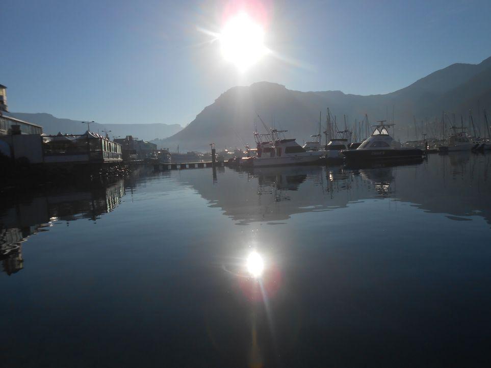 Die Idylle trügt: Vor der südafrikanischen Küste wurde im April 2013 ein gechartertes Fischerboot mit vier Passagieren angegriffen und sank. Die Lei... - Bildquelle: Brian Girard / Kris Olson Discovery Channel