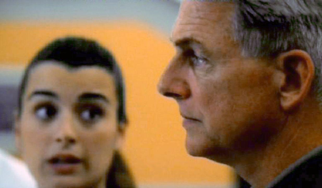 Die Special-Agents Gibbs (Mark Harmon, r.) und Ziva (Cote de Pablo, l.) entlarven die wahre Identität des entführten Jungen ... - Bildquelle: CBS Television