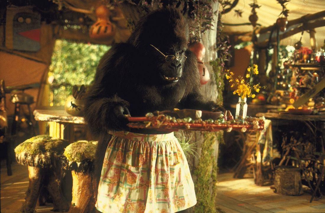 Eines Tages findet der sprechende und lesende Affe Ape ein kleines Baby mitten im Dschungel. Er zieht es auf, bis es ein stattlicher Mann geworden i... - Bildquelle: Disney Enterprises Inc.