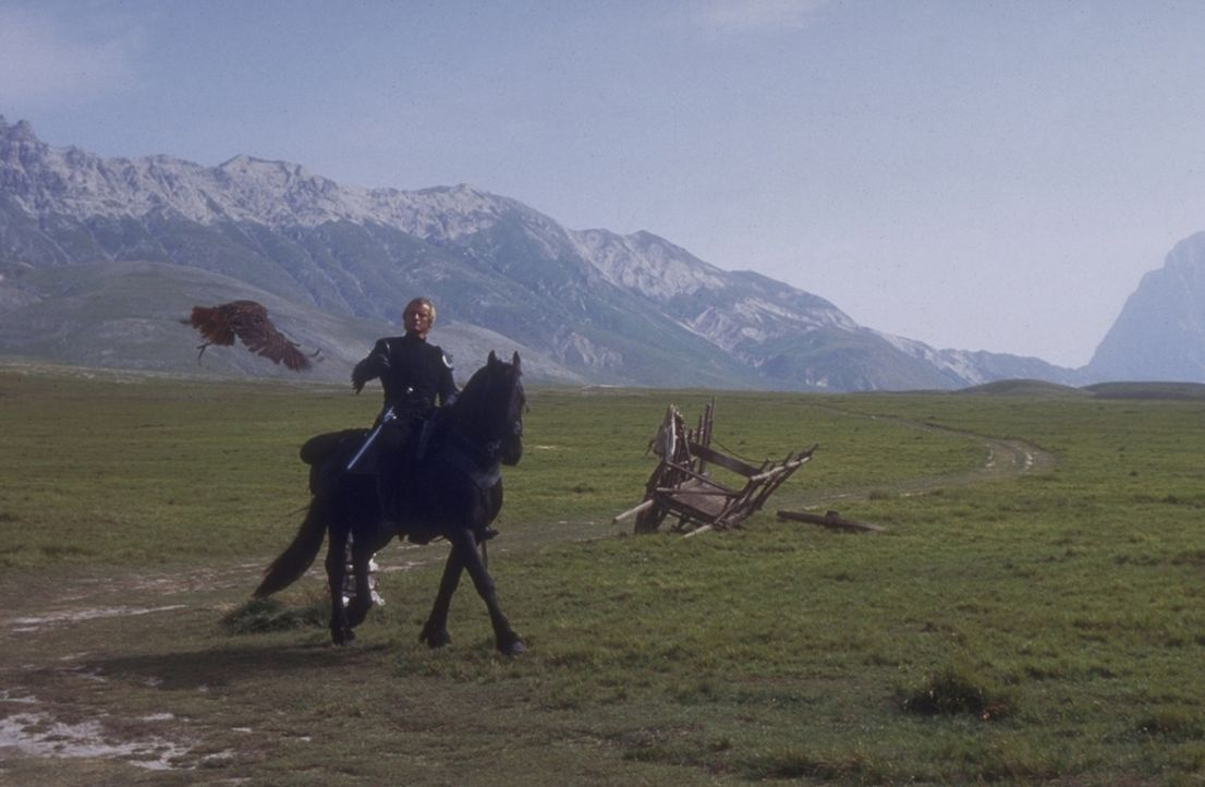 Unzertrennliche Gefährten: Ritter Navarre (Rutger Hauer) und seinen Falken umgibt ein trauriges Geheimnis ... - Bildquelle: 20TH CENTURY FOX FILM CORP. INC