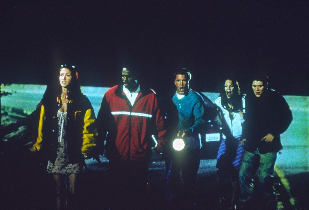 Haben fatalerweise einen folgenschweren Unfall : (v.l.n.r.) Buffy (Shannon Elizabeth), Ray (Shawn Wayans), Greg (Lochlyn Munro), Cindy (Anna Faris)... - Bildquelle: Highlight Film