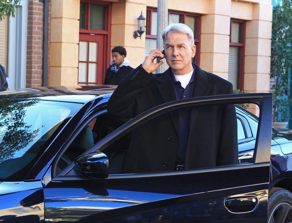 Gemeinsam mit seinem Team versucht Gibbs (Mark Harmon), einen Mörder zu fassen ... - Bildquelle: CBS Television