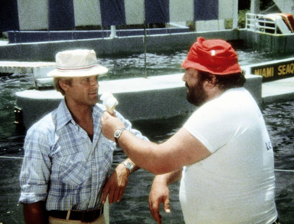Charlie (Bud Spencer, r.) denkt mal wieder nur ans Essen, was seinen Halbbruder Johnny Firpo (Terence Hill, l.) fast zur Verzweiflung bringt ... - Bildquelle: Columbia Pictures
