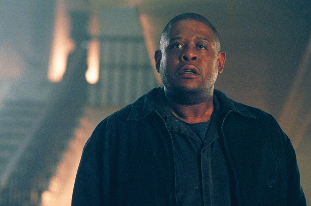 Harte Schale, weicher Kern: Als der Gangster Burnham (Forest Whitaker) erfährt, dass sich in dem Haus eine Mutter mit ihrer Tochter befinden, will... - Bildquelle: 2003 Sony Pictures Television International. All Rights Reserved